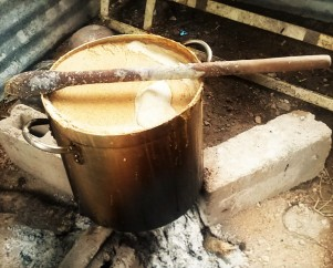 Boiling vats of sweetened corn meal, which will then be left, covered, to ferment for four to five days to produce the local mildly alcoholic homebrew.