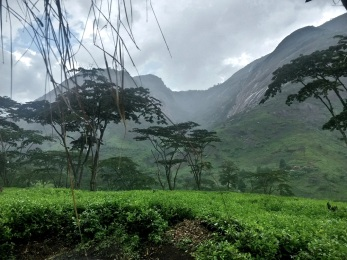 Halfway up a mountain on a Christmas Day hike (in what is possibly the most beautiful place I've yet been in Mozambique), it started raining. By raining, I mean torrents, veritable buckets dumped on our heads.